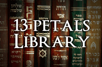 13p Library